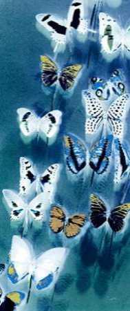 Morccan Blue Butterflies 1