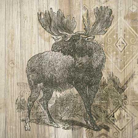 Natural History Lodge VIII