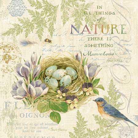 Nature Trail I