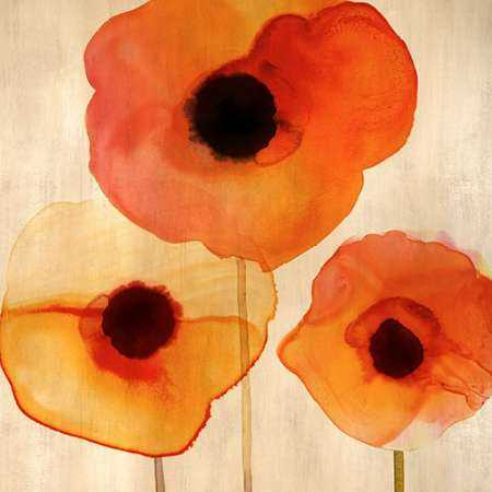 Orange Poppies I