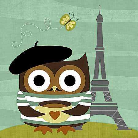 Owl in Paris