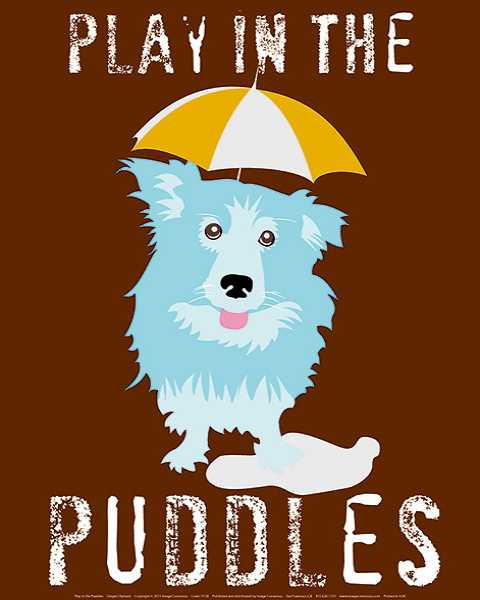 Play in the Puddles