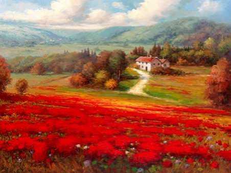 Poppy Fields Afar