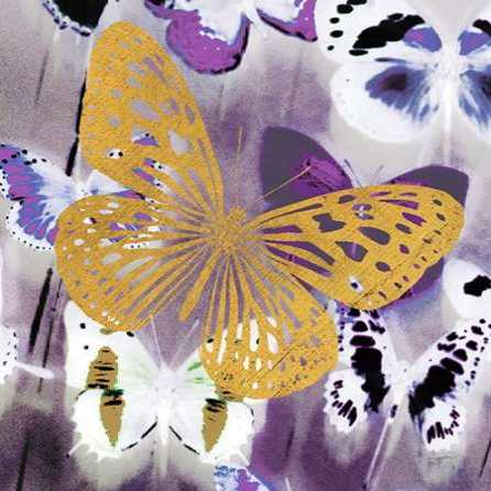 Raining Butterflies 1