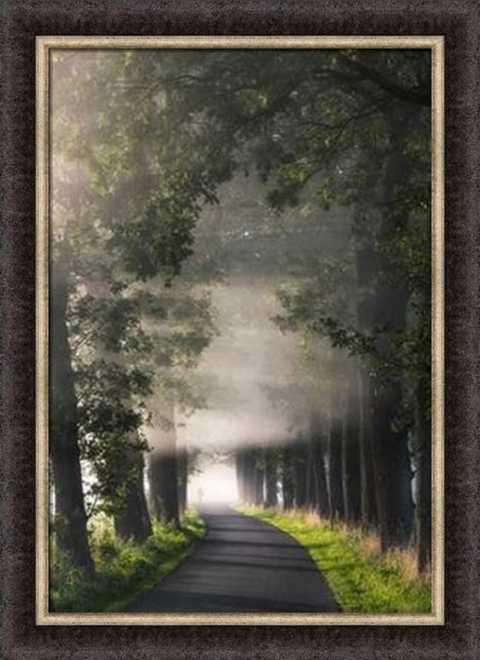 Rays of Fog by Lars Van de Goor
