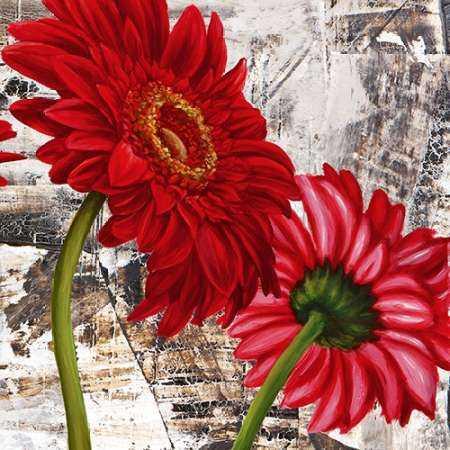 Red Gerberas III