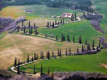 Road near Montepulciano Tuscany