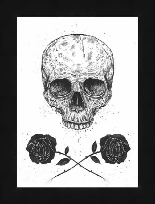 Rose Pirate