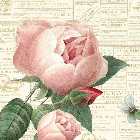 Roses in Paris V