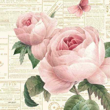 Roses in Paris VI