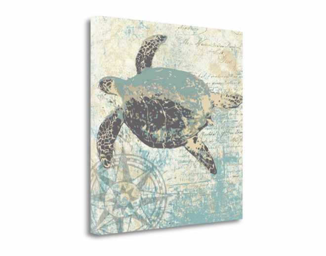 Sea Turtle - Internet Only Special