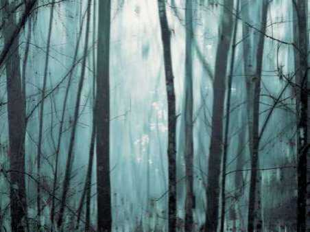 Spring Mist I
