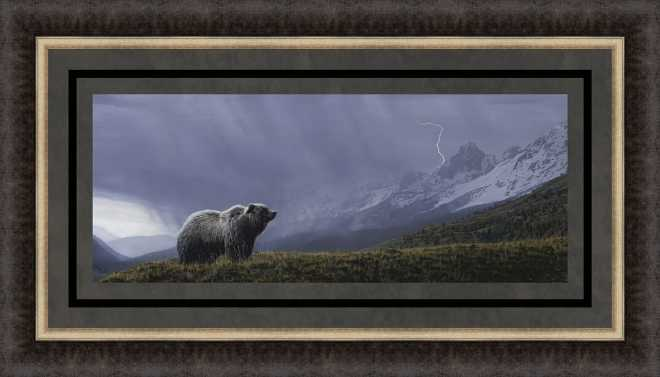 Stormwatch - Grizzly by Terry Isaac