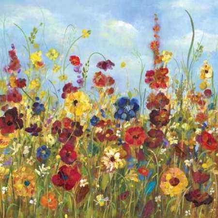 Sunshine Meadow I