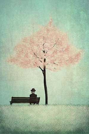 The Cherry Tree - Spring