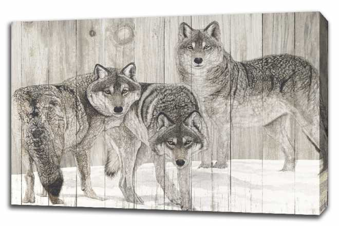 Three Grey Wolves on Wood by Jacquie Vaux