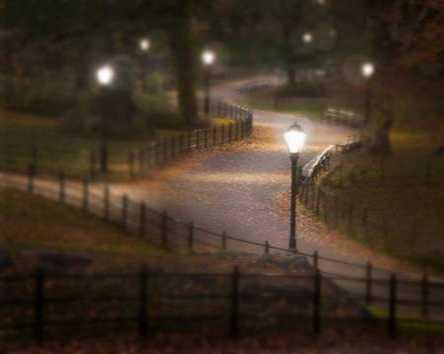 Twilight Stroll