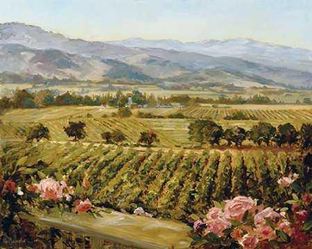 Vineyards to Vaca Mountains