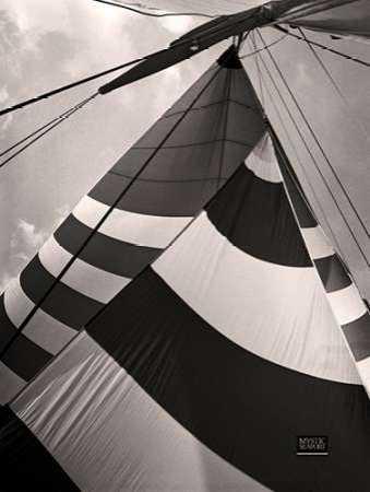 Volantes Sails