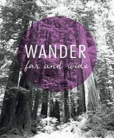 Wander Far and Wide