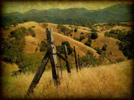 Weathered Ranch Fence