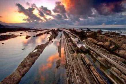 Wild coast 843