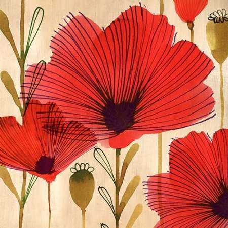 Wild Poppies II
