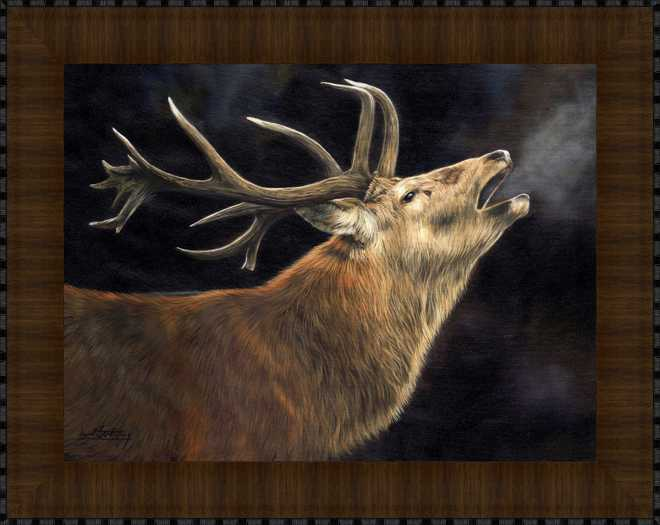 Winter Stag by David Stribbling