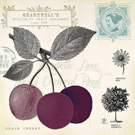 Cherry Notes