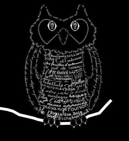 French Owl Black
